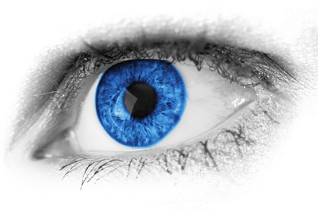 http://pixabay.com/en/abstract-beautiful-beauty-blue-19175/